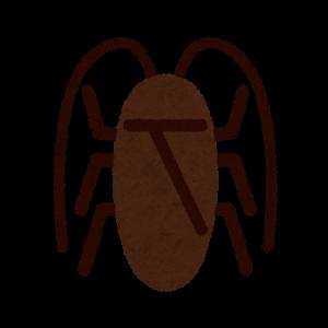 ゴキブリの行動範囲