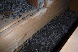 アブラコウモリの侵入によるフン被害