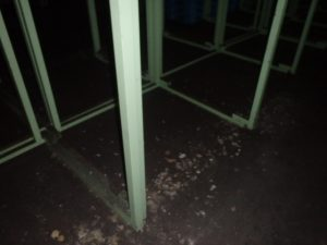 倉庫のハト防除