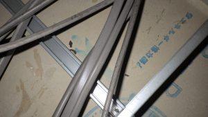 天井裏の形跡・ネズミ
