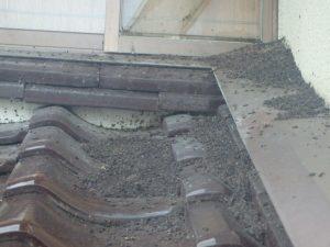10年以上、コウモリが侵入している現場。