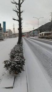 大雪に新型コロナウイルスの猛威