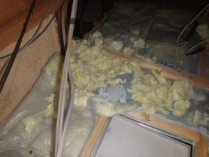 天井裏の被害を解決。
